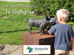 To Galtgrise - crowdfunding